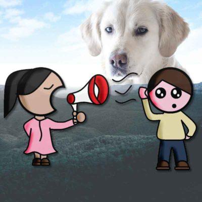 Schwierige Kommunikation über Hundetraining und Verhalten. Deutsch ist eine schwere Sprache